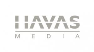Havasmedia-gris-300x168