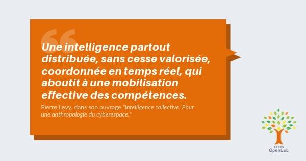 Définition de l'intelligence collective par Pierre Lévy